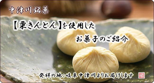 中津川 栗きんとんを使用のお菓子【信玄堂】